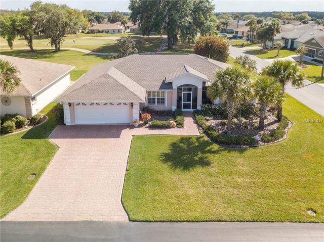 29110 Princeville Drive, San Antonio, FL 33576 (MLS #T3163090) :: Delgado Home Team at Keller Williams