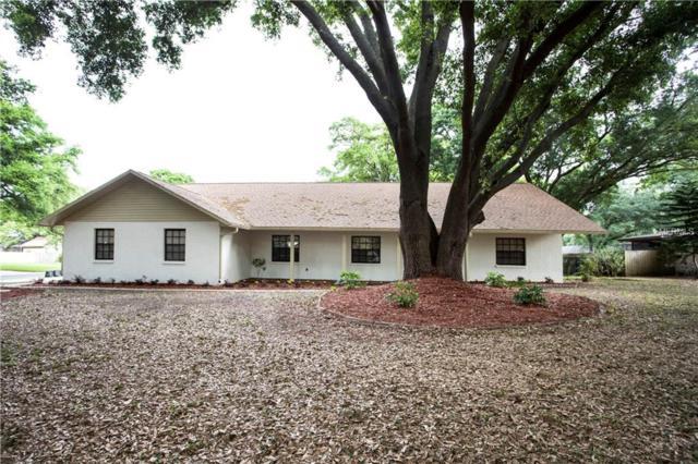 4102 Brooke Drive, Valrico, FL 33594 (MLS #T3163093) :: Jeff Borham & Associates at Keller Williams Realty