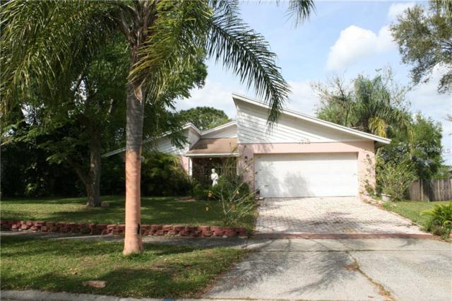 1719 Southwind Drive, Brandon, FL 33510 (MLS #T3163157) :: KELLER WILLIAMS CLASSIC VI