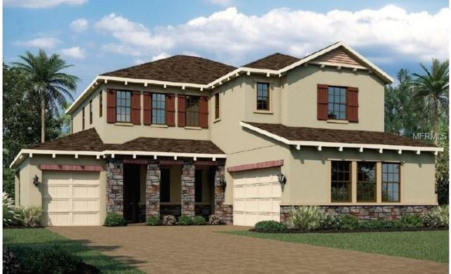 426 Dancing Water Drive, Winter Springs, FL 32708 (MLS #T3163181) :: Team Bohannon Keller Williams, Tampa Properties