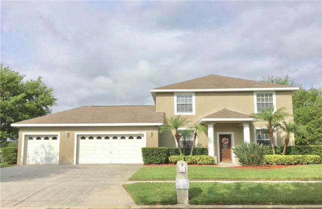 Address Not Published, Tampa, FL 33625 (MLS #T3163185) :: The Duncan Duo Team