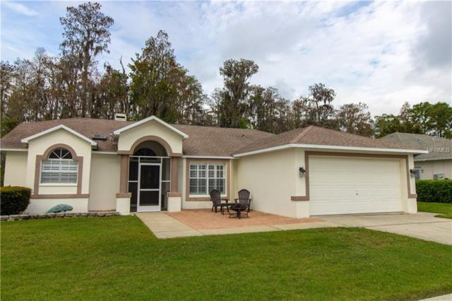 5051 Musselshell Drive, New Port Richey, FL 34655 (MLS #T3163189) :: Premium Properties Real Estate Services