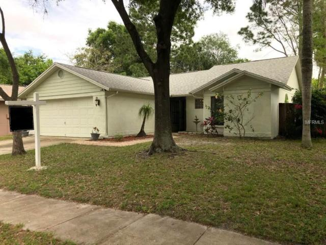 1630 Spinning Wheel, Lutz, FL 33559 (MLS #T3163193) :: The Duncan Duo Team