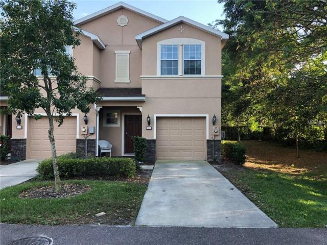 781 Spring Flowers Trail, Brandon, FL 33511 (MLS #T3163199) :: Team Bohannon Keller Williams, Tampa Properties