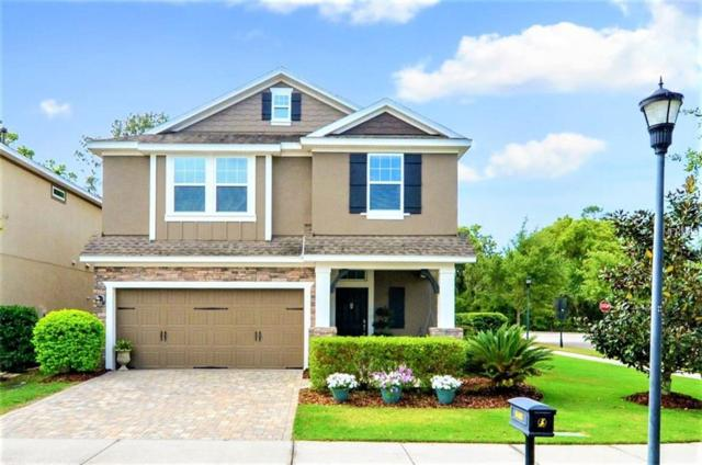 16405 Egret Crossing Lane, Lithia, FL 33547 (MLS #T3163212) :: Team Bohannon Keller Williams, Tampa Properties