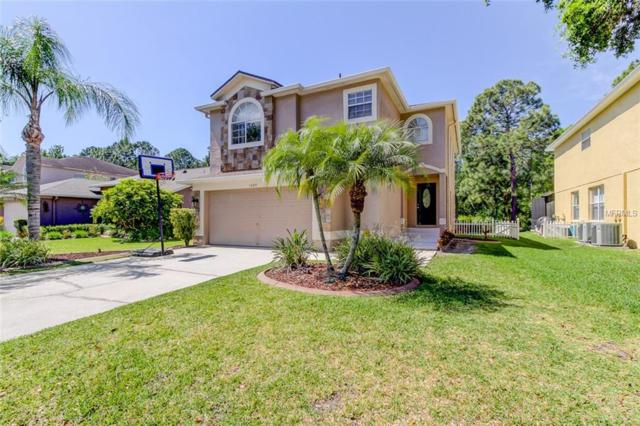 13109 Royal George Avenue, Odessa, FL 33556 (MLS #T3163214) :: The Duncan Duo Team