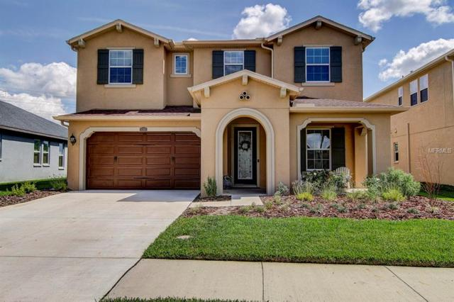 4568 Esperanza Court, Wesley Chapel, FL 33543 (MLS #T3163254) :: Jeff Borham & Associates at Keller Williams Realty