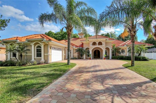 8606 Vivian Bass Way, Odessa, FL 33556 (MLS #T3163279) :: Jeff Borham & Associates at Keller Williams Realty
