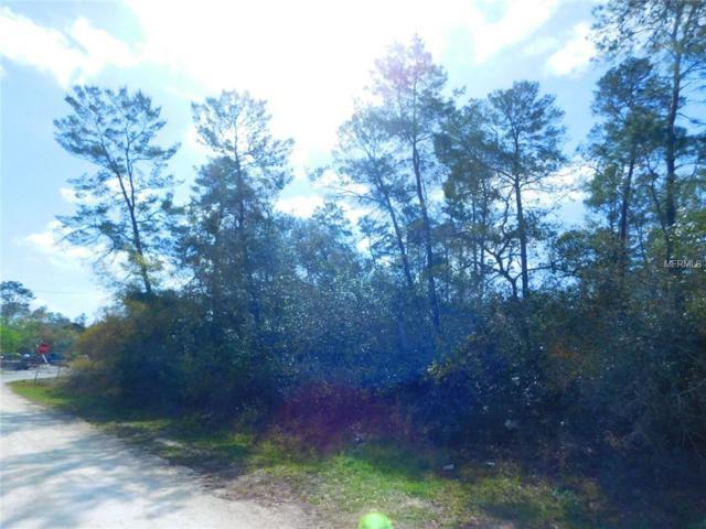 Valimar Road, New Port Richey, FL 34652 (MLS #T3163293) :: The Duncan Duo Team