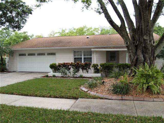 4209 Hollowtrail Drive, Tampa, FL 33624 (MLS #T3163305) :: GO Realty