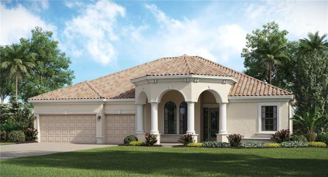20394 Passagio Drive, Venice, FL 34293 (MLS #T3163320) :: RE/MAX Realtec Group