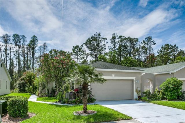 7217 Cleopatra Drive, Land O Lakes, FL 34637 (MLS #T3163324) :: Griffin Group