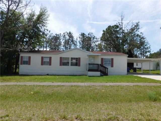 12812 Hawk Hill Drive, Thonotosassa, FL 33592 (MLS #T3163333) :: Jeff Borham & Associates at Keller Williams Realty