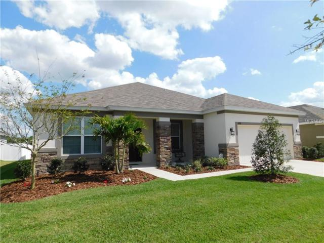 6358 Sparkling Way, Wesley Chapel, FL 33545 (MLS #T3163336) :: The Duncan Duo Team