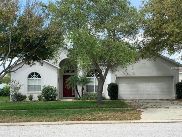 10806 Australian Pine Drive, Riverview, FL 33579 (MLS #T3163363) :: The Nathan Bangs Group