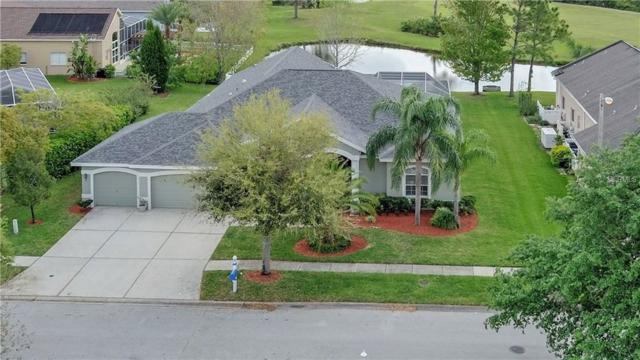 19115 Harborbridge Lane, Lutz, FL 33558 (MLS #T3163388) :: The Duncan Duo Team