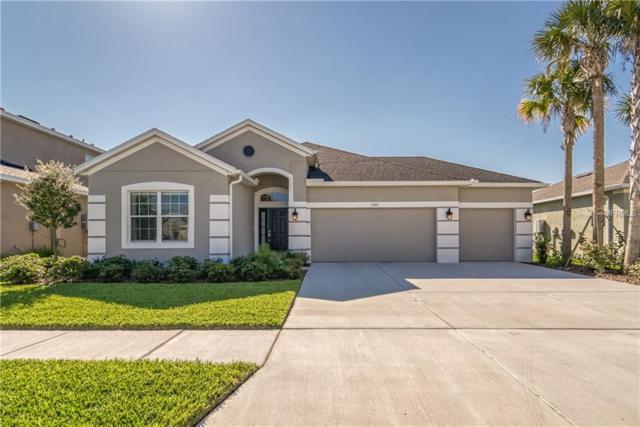 17565 Buckingham Garden Drive, Lithia, FL 33547 (MLS #T3163399) :: Team Bohannon Keller Williams, Tampa Properties