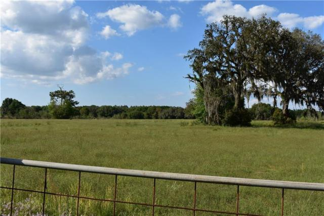 00000 State Road 52, San Antonio, FL 33576 (MLS #T3163433) :: Jeff Borham & Associates at Keller Williams Realty
