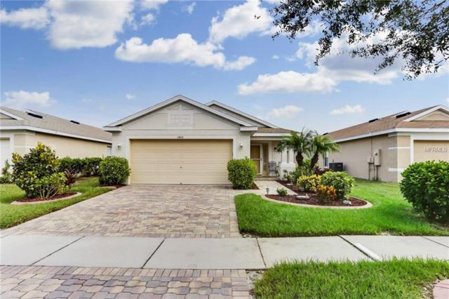 11433 Bay Gardens Loop, Riverview, FL 33569 (MLS #T3163482) :: Jeff Borham & Associates at Keller Williams Realty