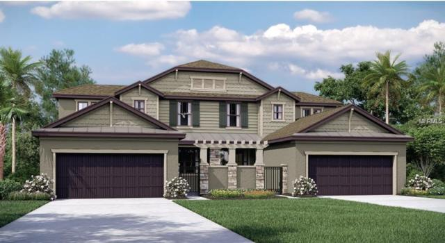 8610 Villa Square Court, Tampa, FL 33614 (MLS #T3163506) :: Lockhart & Walseth Team, Realtors