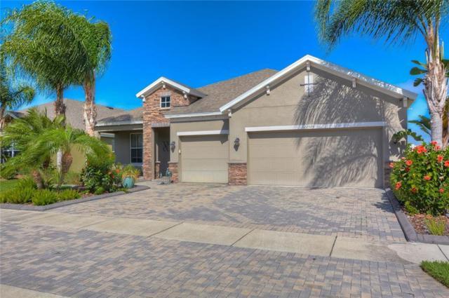 22595 Cherokee Rose Place, Land O Lakes, FL 34639 (MLS #T3163508) :: Jeff Borham & Associates at Keller Williams Realty