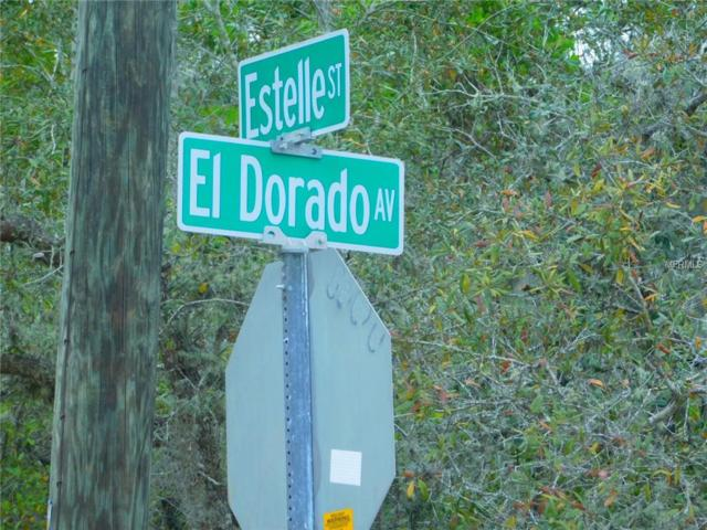 0 Estelle Street, New Port Richey, FL 34653 (MLS #T3163518) :: The Duncan Duo Team