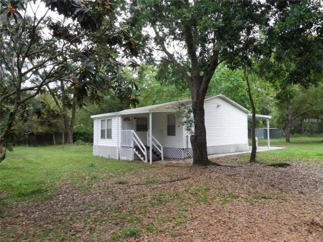 26825 Glenhaven Road, Wesley Chapel, FL 33544 (MLS #T3163540) :: The Duncan Duo Team