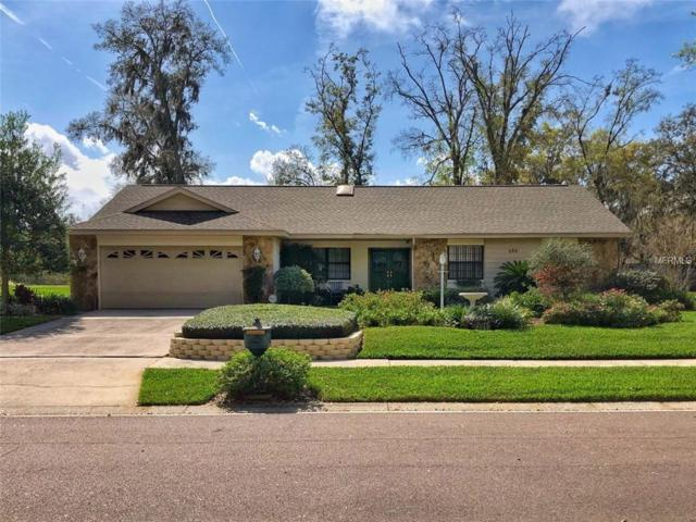 409 Bayfield Drive, Brandon, FL 33511 (MLS #T3163543) :: Jeff Borham & Associates at Keller Williams Realty
