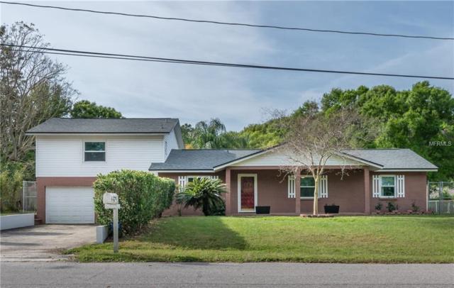 1205 E 162ND Avenue, Lutz, FL 33549 (MLS #T3163564) :: Jeff Borham & Associates at Keller Williams Realty