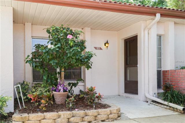 1113 Montrose Place, Dunedin, FL 34698 (MLS #T3163649) :: Jeff Borham & Associates at Keller Williams Realty