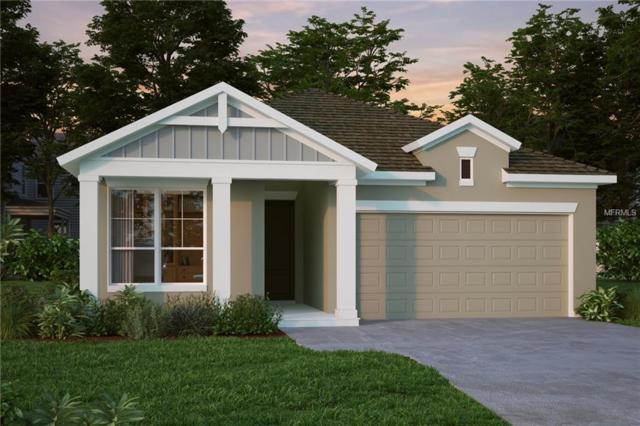 15068 Renaissance Avenue, Odessa, FL 33556 (MLS #T3163661) :: Jeff Borham & Associates at Keller Williams Realty