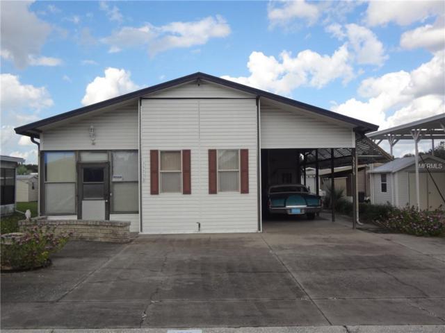 35215 Dodie Drive, Zephyrhills, FL 33541 (MLS #T3163662) :: Jeff Borham & Associates at Keller Williams Realty