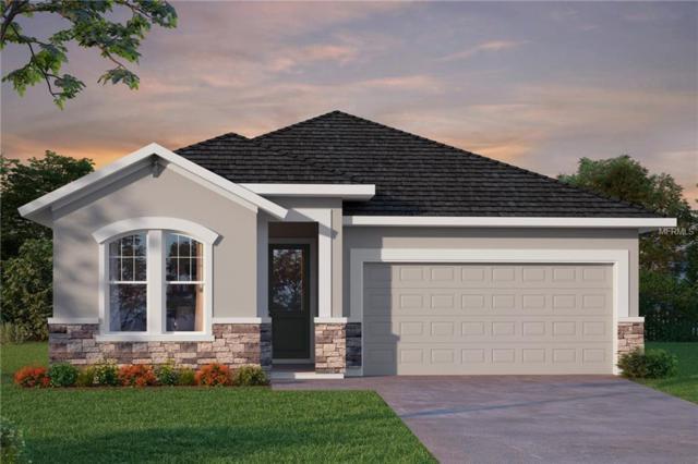 15050 Renaissance Avenue, Odessa, FL 33556 (MLS #T3163663) :: Jeff Borham & Associates at Keller Williams Realty