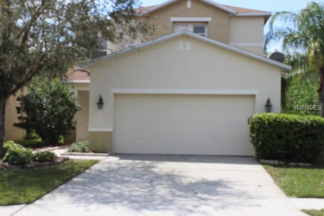 3635 Peppervine Place, Wesley Chapel, FL 33544 (MLS #T3163664) :: Jeff Borham & Associates at Keller Williams Realty