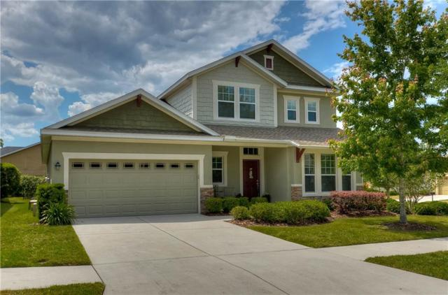 15827 Starling Water Drive, Lithia, FL 33547 (MLS #T3163702) :: The Duncan Duo Team