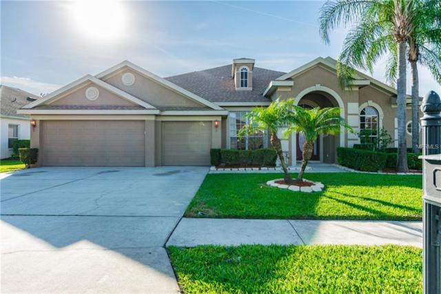 3839 Eagleflight Lane, Land O Lakes, FL 34639 (MLS #T3163732) :: Jeff Borham & Associates at Keller Williams Realty