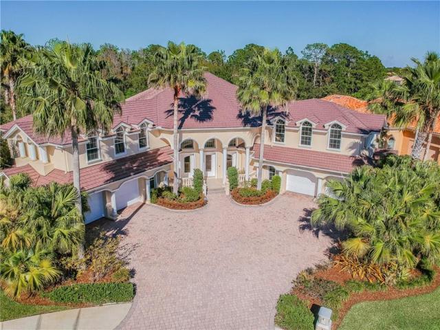 17951 Cachet Isle Drive, Tampa, FL 33647 (MLS #T3163795) :: Delgado Home Team at Keller Williams