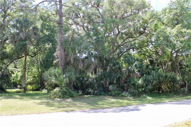 17073 Glenview Avenue, Port Charlotte, FL 33954 (MLS #T3163815) :: The Duncan Duo Team