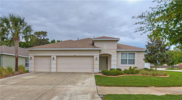 10314 Holland Road, Riverview, FL 33578 (MLS #T3163819) :: Cartwright Realty