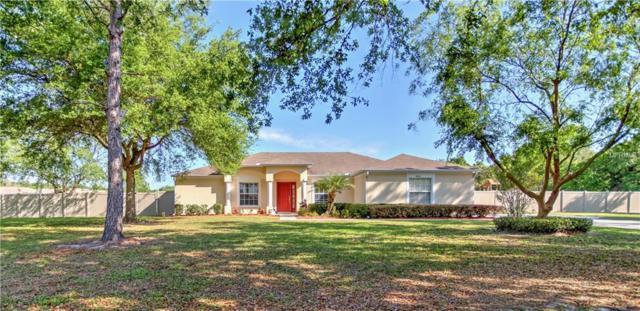 9406 Barrington Oaks Drive, Dover, FL 33527 (MLS #T3163834) :: Jeff Borham & Associates at Keller Williams Realty