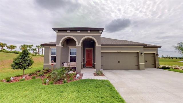 11933 Tetrafin Drive, Riverview, FL 33579 (MLS #T3163835) :: Jeff Borham & Associates at Keller Williams Realty