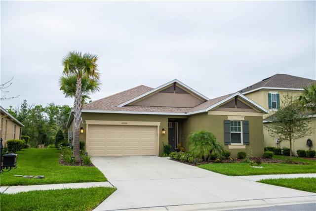 27035 Carolina Aster Drive, Wesley Chapel, FL 33544 (MLS #T3163836) :: NewHomePrograms.com LLC