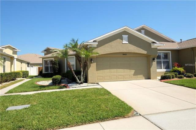 30422 Lettingwell Circle, Wesley Chapel, FL 33543 (MLS #T3163837) :: Delgado Home Team at Keller Williams