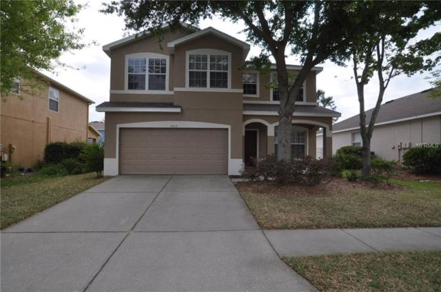 6015 Blue Sage Drive, Land O Lakes, FL 34639 (MLS #T3163839) :: Jeff Borham & Associates at Keller Williams Realty