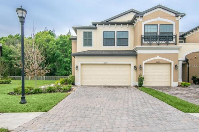 30289 Southwell Lane, Wesley Chapel, FL 33543 (MLS #T3163866) :: Jeff Borham & Associates at Keller Williams Realty