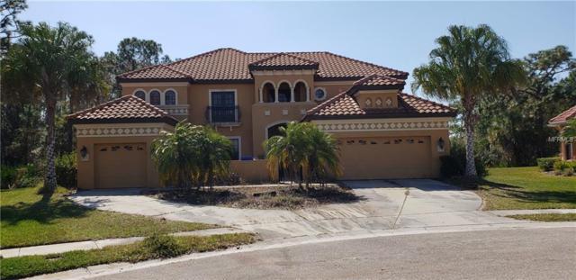 20001 Pergola Bend Lane, Tampa, FL 33647 (MLS #T3163867) :: The Nathan Bangs Group