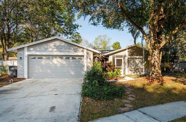 15818 Hound Horn Lane, Tampa, FL 33624 (MLS #T3163887) :: Team Bohannon Keller Williams, Tampa Properties
