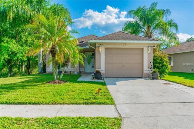 10439 Isleworth Avenue, Tampa, FL 33647 (MLS #T3163892) :: Jeff Borham & Associates at Keller Williams Realty