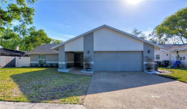 17817 Sunrise Drive, Lutz, FL 33549 (MLS #T3163895) :: Jeff Borham & Associates at Keller Williams Realty