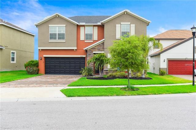 10226 Count Fleet Drive, Ruskin, FL 33573 (MLS #T3163919) :: Team Bohannon Keller Williams, Tampa Properties